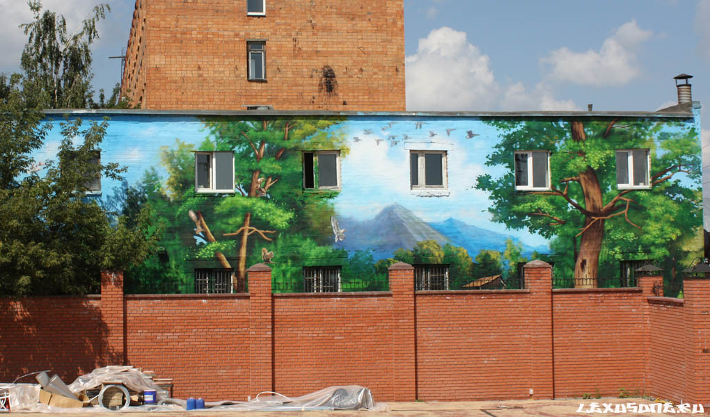 Граффити на заказ стит арт на фасаде дома