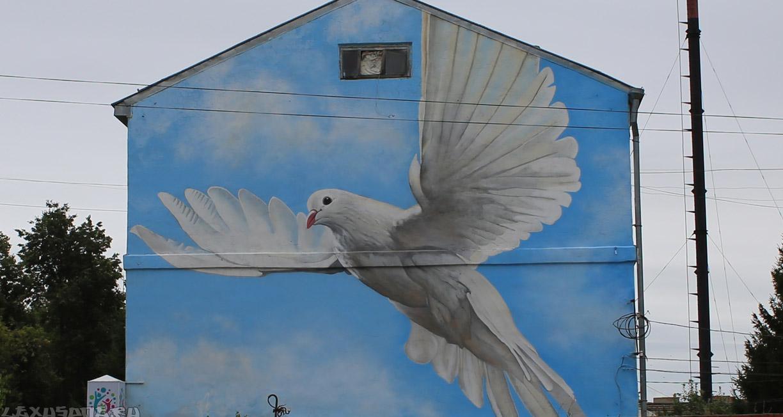 граффити на фасаде дома город Павлово 2017